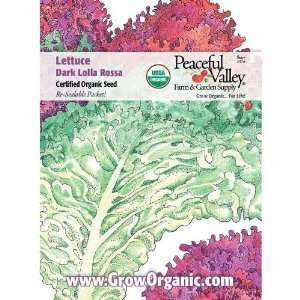 Organic Lettuce Seed Pack, Dark Lolla Rosa: Patio, Lawn & Garden
