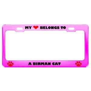 Birman Cat Pet Pink Metal License Plate Frame Tag Holder