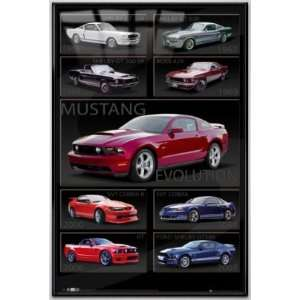 Ford Mustang Evolution   Framed Poster (Size 24 x 36
