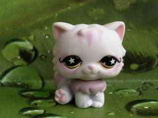 LITTLEST PET SHOP Persian Kitty Cat Star Eyes #891