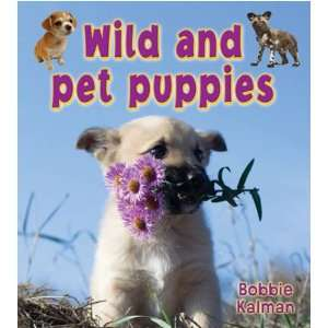 Fun to Learn about Baby Animals) (9780778739579) Bobbie Kalman Books
