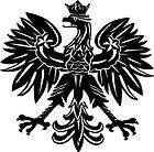 BLACK Vinyl Decal   Polish Eagle poland symbol sticker fun truck