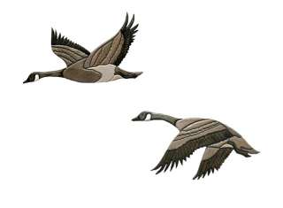 Pair CANADIAN GOOSE Wood OAK CARVED Wall Plaque INLAY