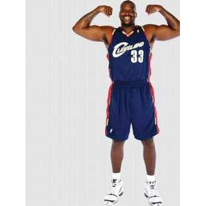 Wallpaper Fathead Fathead NBA Players & Logos Shaquille O