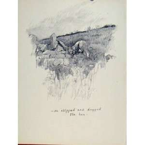 Dropped Hen Bird Hunt Dog Hound Pet Animal Sketch Print