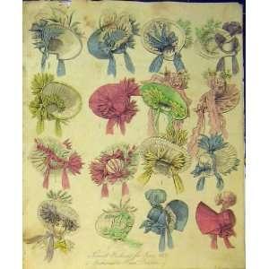 1831 Womens Fashion Fashionable Head Dresses Hats Print
