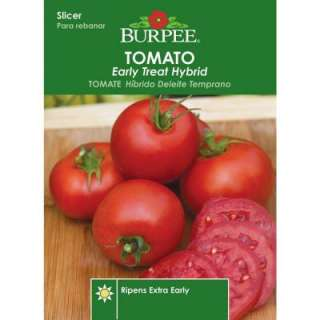 Burpee Tomato Early Treat Hybrid Seed 64658 at The Home Depot