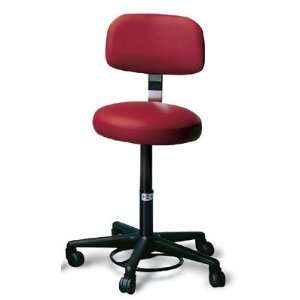 Hausmann Foot Controlled Air Lift Stool with Backrest