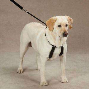 Guardian Gear Anti Pull Harnesses for Dogs