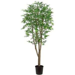 Japanese Maple Silk Tree w/Pot  1,299 Leaves (case of 2):
