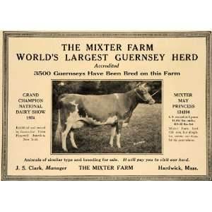 1924 Ad Mixter Farm Worlds Largest Guernsey Herd Cows