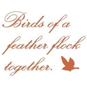 Wall Hugs Vinyl Wall Quotes   Birds Of A Feather Wall Decal, Terra