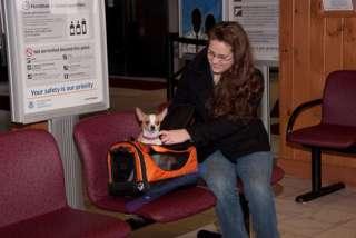 Pet Gear World Traveler Airline Dog Carrier ALL COLORS